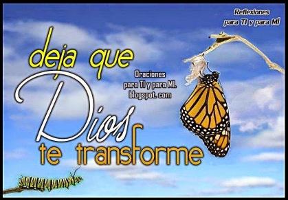 santidad y transformacion