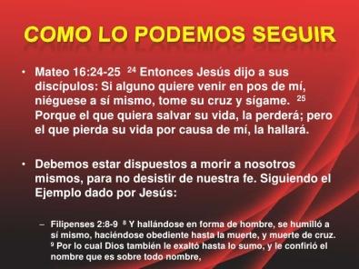 seguir a cristo apostolado