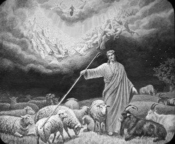 separacion de las ovejas