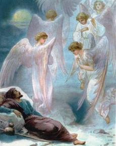 angeles (17)
