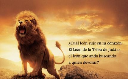 leon-rugiente decision
