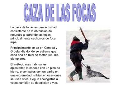 000focas-9-728