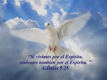 000vivir-guiados-por-el-espiritu-santo