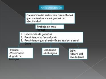 anticonceptivos-para-el-control-de-la-natalidad-2-638