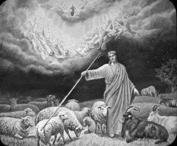 pastor separacion ovejas y cabras sheepgoats
