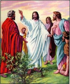 Jesus Sends Out the Disciples Matthew 10:1-10