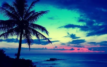atardeceres-en-playas-2450