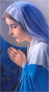 Dios te salve María llena eres de gracia el Señor es contigo; bendita tú eres  entre todas las mujeres, y bendito es el fruto  de tu vientre, Jesús.  Santa María, Madre de Dios, ruega por nosotros, pecadores, ahora y en la ahora de nuestra muerte. Amén