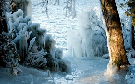 nature-landscapes-lakes-trees-forest-wood-ice-storm-winter-seasons-sunlight-freezing-wallpaper-184099