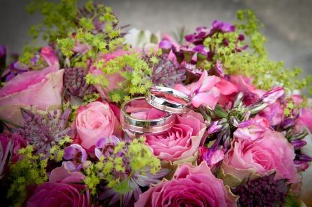flowers-260893_960_720